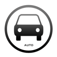 auto_300